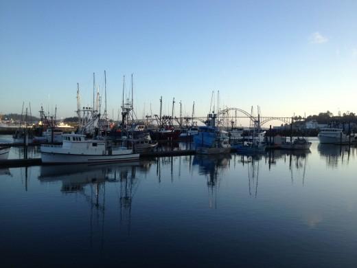 Marina at Newport, Oregon